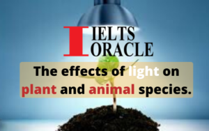 IELTS Reading-The effects of light on plant and animal species
