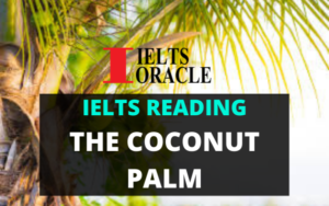 Ielts Reading-The coconut palm