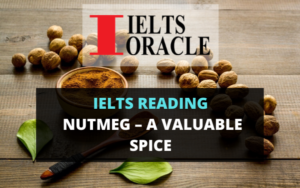 Ielts Reading Nutmeg – a valuable spice